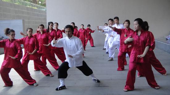 新南威尔士汉语文化推广中心赴上海和西安汉语游学团结束